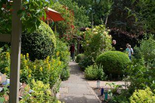 Der Hauptweg durch meinen Garten