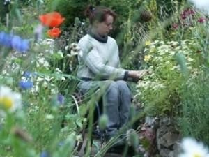 Barrierefreies Gärtnern vom Rollstuhl aus